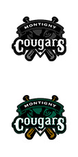 Logo Montigny Baseball
